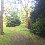 Royal Scots Club the gardens