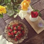 strawberries for breakfast with a side of roses
