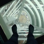 The view from the glass floor! :)
