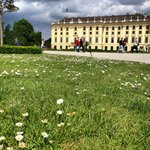 Vista dos jardins para Schönbrunn (para tirar fotos neste local, não necessita de ingresso)