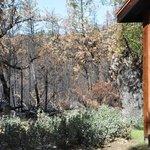 Fire damage adjoining