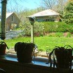 View of backyard from kitchen window