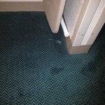 Überall schlimme Flecken auf dem Teppich