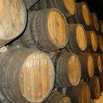 Many barrels