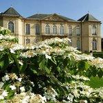 Museu Rodin na Primavera