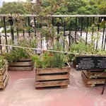 Rooftop herb garden and seating area