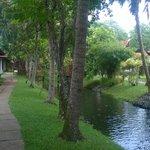 Path to villas