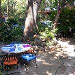 jardín para desayunar