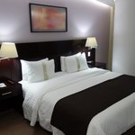 Foto de Holiday Inn Hotel & Suites Mexico Medica Sur