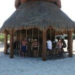Beach bar with swings!