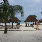 beach area…plenty of loungers