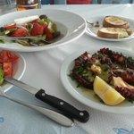 Octopus, sald, tosts...