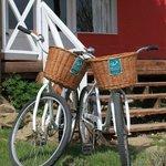 Bicicletas free para pasear por la laguna