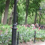 Washinton Park