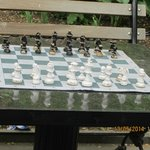 Chess board in the park