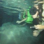 Swimming in the second cenote