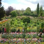 Monet's garden from house.
