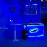 Foto de Pescheria lo squalo
