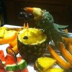 Pineapple parrot.