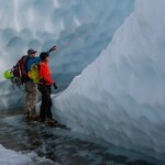 Knowledgable guides teach about natural history and glaciology