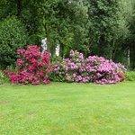 Colourful gardens