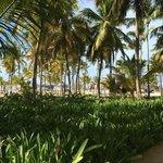 Vista de la playa desde la entrada a las habitaciones (Privilege)