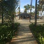 Caminito hacia la playa