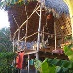 Clandestino Jungle Lounge