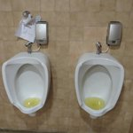 The disgusting state of the toilets