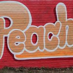 Street Artists Tribute to Peaches Geldof