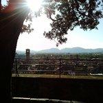 Lucca dal giardino della torre