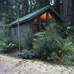 Little Sur Cabin