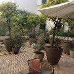 Interior patio/courtyard