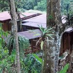 Rio Chir ripoff Retreat