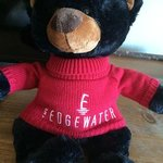 The Edgewater bear in the room