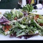 Apple, Blue Cheese & Pecan salad