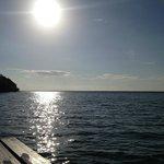 Lake view on my morning swim