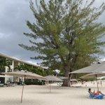 Condo beach area