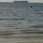 La arena blanca y el mar azul no se ven en la playa del hotel