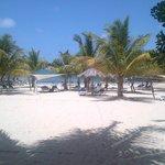Rasta Beach Bar view