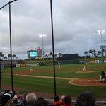 The Ball Field