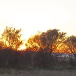 Rietvlei Nature Reserve