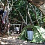 Camping Camaleón, Caños de Meca, Spain.