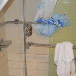 Gehandicapte kamer: Badkamer met handgrepen