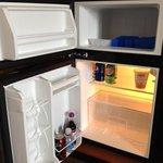 Fridge/freezer in regular room