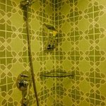 Shower section