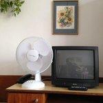 Natura morta con ventilatore di plastica, pianta e televisore a tubo catodico.