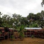 Jungle Explorer Lodge Foto