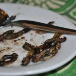 Fried Crickets