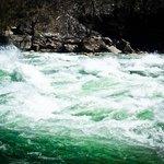 Mean green rapids machine